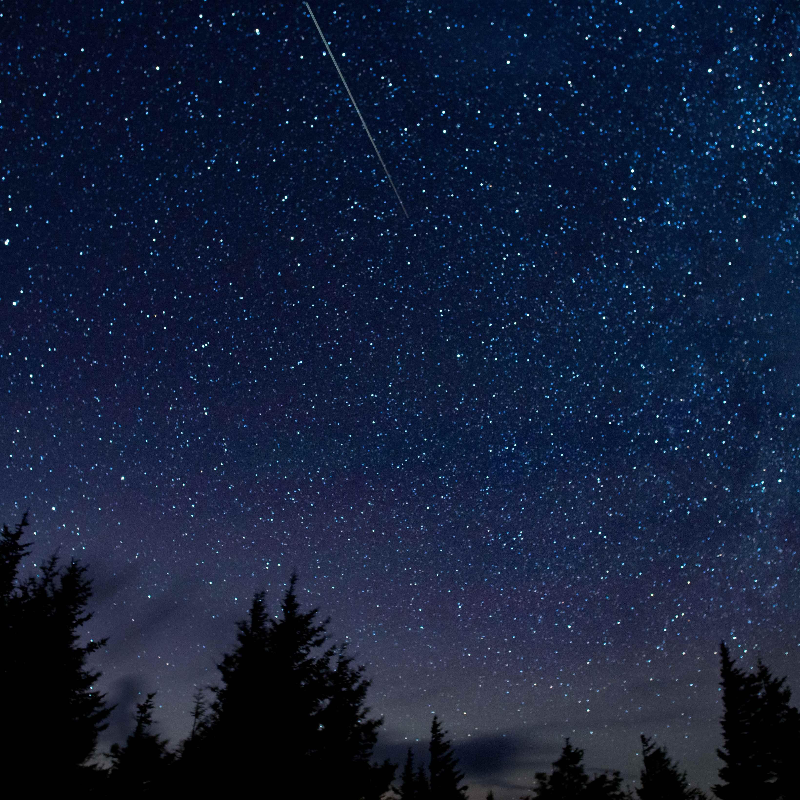 10 Faktet kryesore të reshjes së meteorëve: Perseidet